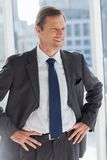 Businessman with his hands on hips Stock Photography