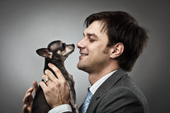 Businessman with his pet. Young businessman holding his chihuahua dog pet Royalty Free Stock Photo