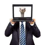 Businessman hold the computer Royalty Free Stock Image