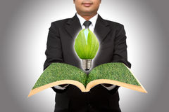 Businessman hold green light bulb Royalty Free Stock Image