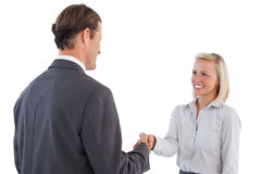 Businessman holding business woman hand Royalty Free Stock Photos