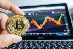 Businessman holding Golden Bitcoin in front of laptop with stock. Exchange graph background. Digital money concept Stock Images