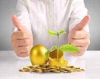 Businessman Holding  Golden Eggs Royalty Free Stock Photos