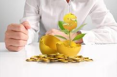 Businessman Holding  Golden Eggs Stock Image