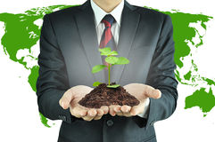 Businessman holding green seedling with soil Royalty Free Stock Images