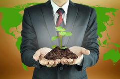 Businessman holding green seedling with soil Royalty Free Stock Photos
