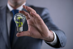 The businessman holding lamp in green environment concept Royalty Free Stock Photos