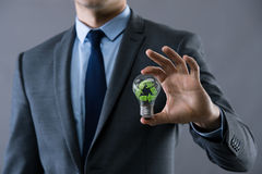 The businessman holding lamp in green environment concept Stock Image