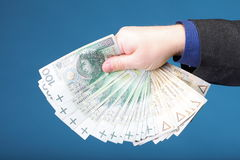 Businessman holding money polish banknote Royalty Free Stock Photography