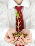 Businessman holding a plant Stock Image