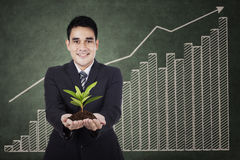 Businessman holding a plant Royalty Free Stock Image