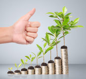 Businessman holding plant sprouting from  handful of coins Stock Photos