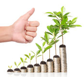 Businessman holding plant sprouting from  handful of coins Royalty Free Stock Photos