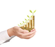 Businessman holding plant sprouting from  handful of coins Stock Image