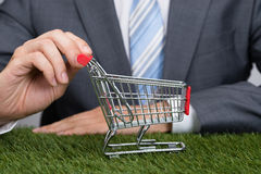 Businessman Holding Shopping Cart On Grass Royalty Free Stock Images