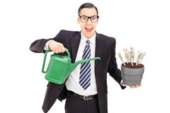 Businessman holding watering can and flowerpot with US dollars Stock Photo