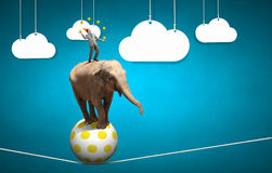 Businessman juggling with balls. Young businessman in cap standing on elephant and juggling with balls Royalty Free Stock Images