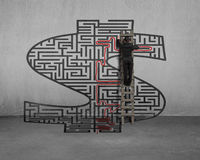 Businessman on ladder drawing solution on money shape maze Stock Photos
