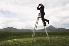 Businessman Looking Into The Distance Royalty Free Stock Image