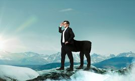Businessman looking forward on the top of mountain. Success business way concept. Purposeful and confident businessman centaur looking forward on the top of Stock Images