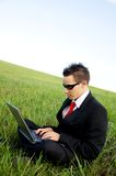 Businessman looking at laptop Royalty Free Stock Images