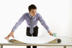 Businessman looking at plans. Royalty Free Stock Photo