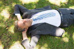 Businessman lying on grass Royalty Free Stock Photography