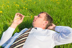Businessman lying on the grass Royalty Free Stock Images