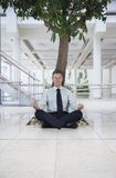 Businessman Meditating Under Tree Stock Photography