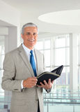 Businessman in Modern Office Royalty Free Stock Photo