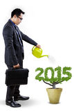 Businessman nurture a tree shaped number 2015. Young entrepreneur with briefcase watering a tree shaped number 2015, symbolizing investment for future royalty free stock images