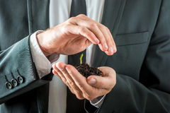 Businessman nurturing a germinating seedling. In rich fertile soil cupping it in his hand while covering it with the other conceptual of awareness of Royalty Free Stock Photos