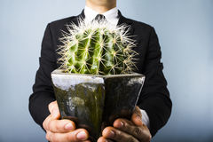 Businessman offering a cactus. Businessman in black suit offering a cactus to camera Royalty Free Stock Photos