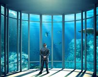 Businessman in the office with glass walls Stock Image