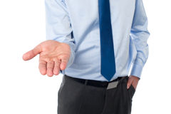 Businessman open palm hand Stock Photos