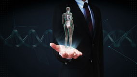 Businessman open palm, Rotating Female Human the internal organs, heart system, Blue X-ray light.