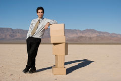 Businessman organizing boxes stock image