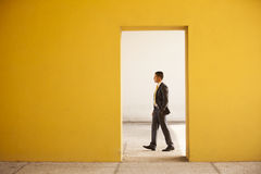 Businessman Outdoor Stock Photography