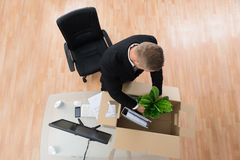 Businessman Packing Belongings In Cardboard Box Stock Photography