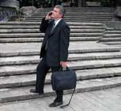 Businessman in a park. Businessman speaking to the phone in a park Royalty Free Stock Images