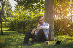 Businessman in Park Stock Image