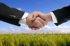 Businessman partners shaking hands in nature royalty free stock photo