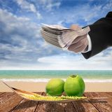 Businessman pay for coconut and spadix flower of coconut on deck. Businessman pay for coconut and spadix flower of coconut on wooden deck and sea background Stock Images