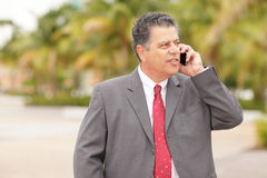 Businessman on the phone Royalty Free Stock Photo