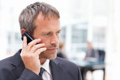 Businessman phoning in his office Royalty Free Stock Image