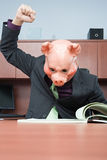 Businessman in pig mask reading Stock Image