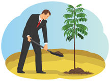Businessman plants a tree Royalty Free Stock Photo