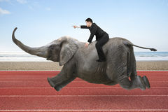 Businessman with pointing finger gesture riding on elephant. With sky sea beach and red track background Stock Photos