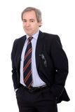 Businessman portrait Stock Image