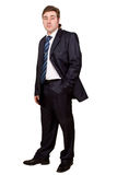 Businessman posing in a suit Royalty Free Stock Photography